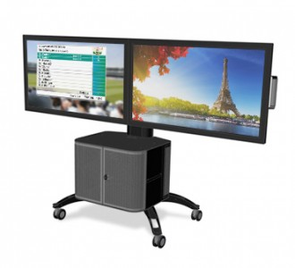 Dual Mobile Plasma Display Stand with Cabinet
