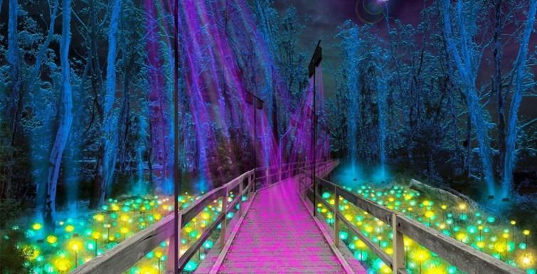 Moama Lights – Immersive Light and Sound Installation