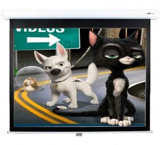 Screen Technics CinemaPro Premium Pull Down Screen
